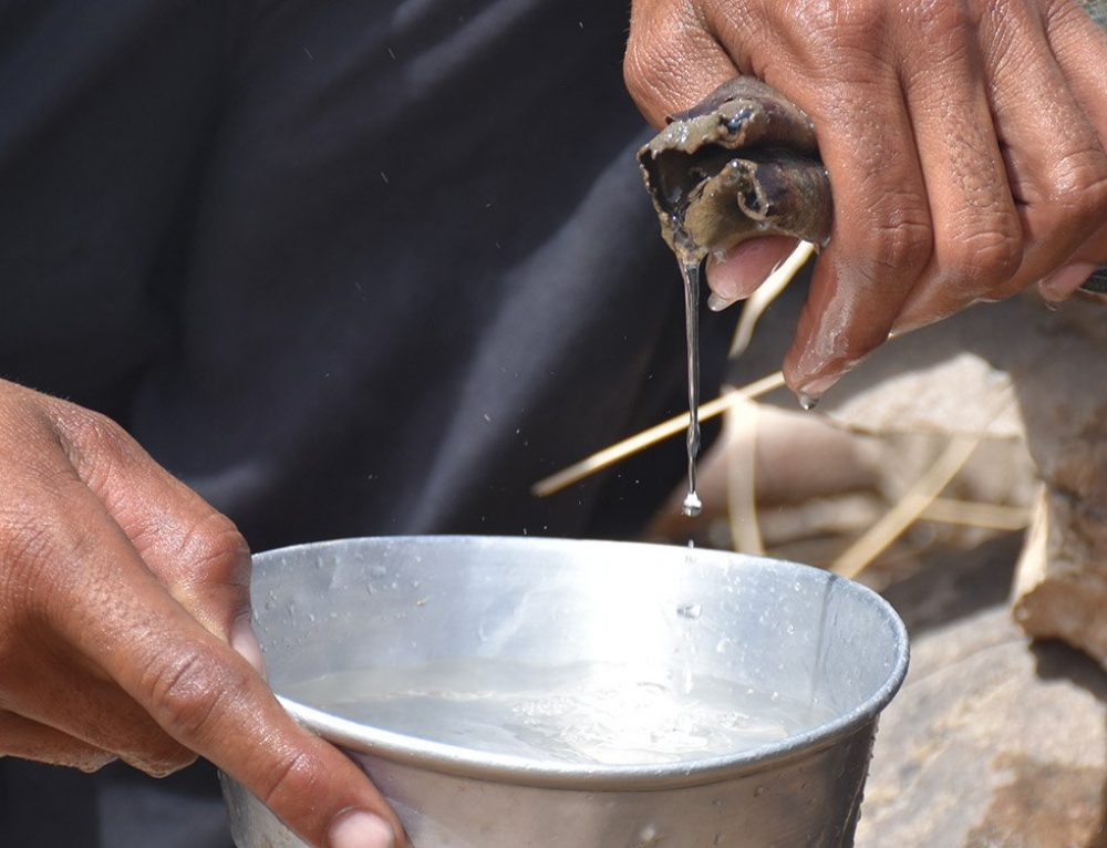 Thirsty for water, Sindh braces for a public health crisis