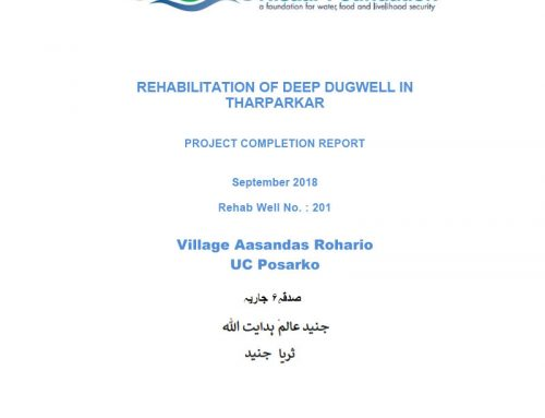 Rehabilitation of Deep Dugwell in Tharparkar